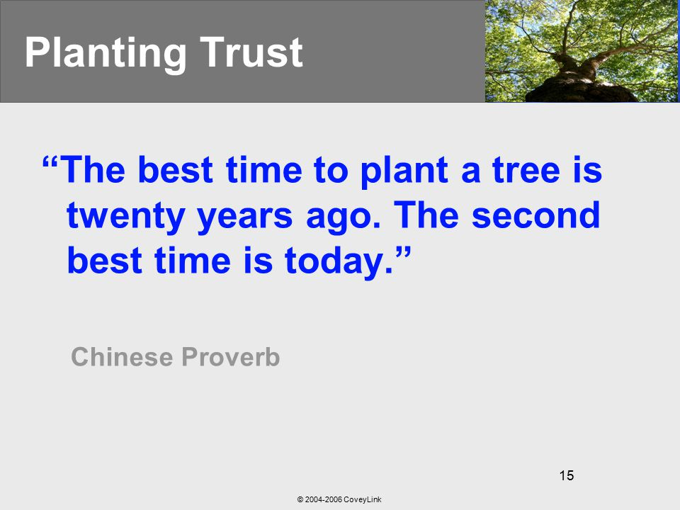 © 2004-2006 CoveyLink 15 Planting Trust The best time to plant a tree is twenty years ago.