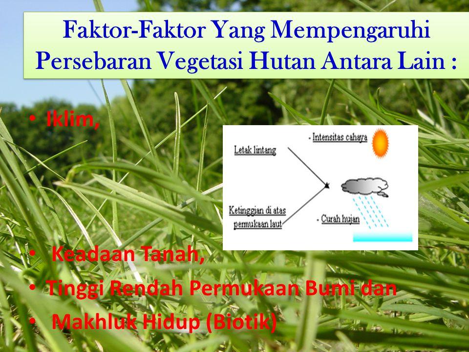 Faktor-Faktor Yang Mempengaruhi Persebaran Vegetasi Hutan Antara Lain : Iklim, Keadaan Tanah, Tinggi Rendah Permukaan Bumi dan Makhluk Hidup (Biotik) Iklim, Keadaan Tanah, Tinggi Rendah Permukaan Bumi dan Makhluk Hidup (Biotik)