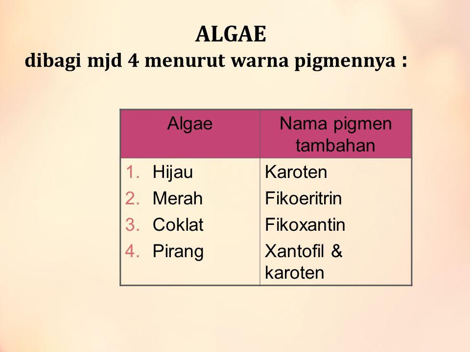 ALGAE dibagi mjd 4 menurut warna pigmennya : AlgaeNama pigmen tambahan 1.Hijau 2.Merah 3.Coklat 4.Pirang Karoten Fikoeritrin Fikoxantin Xantofil & kar