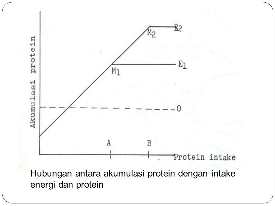 Hubungan antara akumulasi protein dengan intake energi dan protein