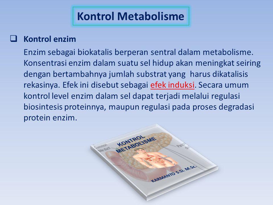 Kontrol Metabolisme  Kontrol enzim Enzim sebagai biokatalis berperan sentral dalam metabolisme. Konsentrasi enzim dalam suatu sel hidup akan meningka