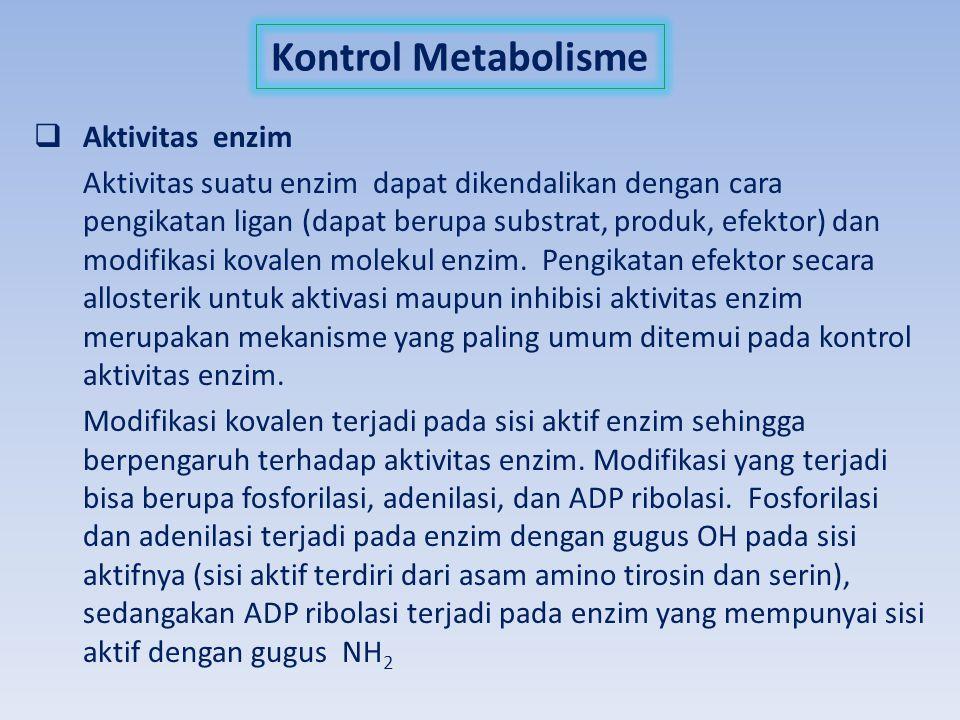 Kontrol Metabolisme  Aktivitas enzim Aktivitas suatu enzim dapat dikendalikan dengan cara pengikatan ligan (dapat berupa substrat, produk, efektor) d