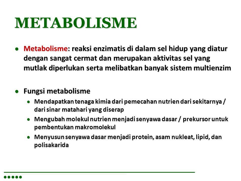 METABOLISME (lanjt.) ● Katabolisme: Tahap pemecahan nutrien organik (karbohidrat, lipid dan protein) yang datang baik dari lingkungan maupun timbunan nutrien sel itu sendiri dipecah menjadi senyawa yang lebih kecil  untuk mendapatkan tenaga berupa ATP ● Anabolisme: Tahap pembentukan/biosintesis, yaitu biosintesis komponen sel seperti asam nukleat, protein, polisakarida dan lipid dari prekursornya.