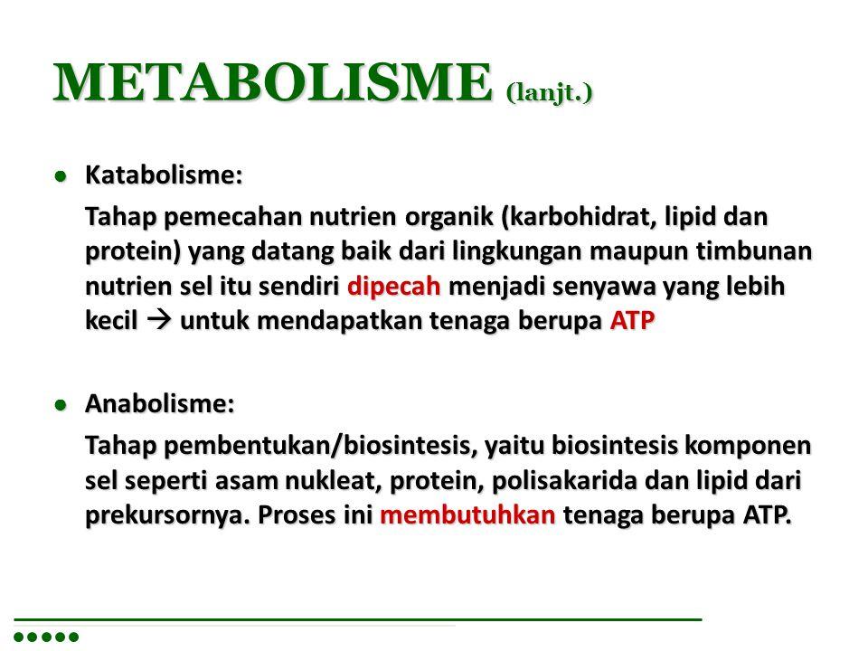 METABOLISME (lanjt.) ● Katabolisme: Tahap pemecahan nutrien organik (karbohidrat, lipid dan protein) yang datang baik dari lingkungan maupun timbunan