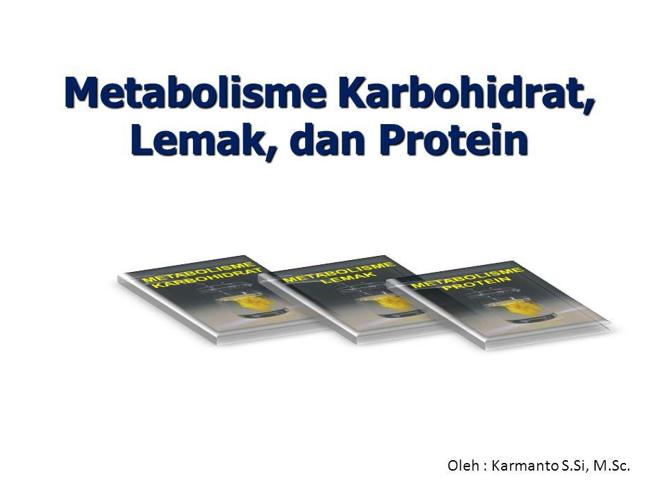 SIKLUS ASAM SITRAT  Siklus asam sitrat bukan merupakan bagian katabolisme karbohidrat saja, Karena jalur ini merupakan pusat proses oksidasi dimana semua bahan bakar (karbohidrat, protein, dan lipid) mengalami reaksi katabolisme.