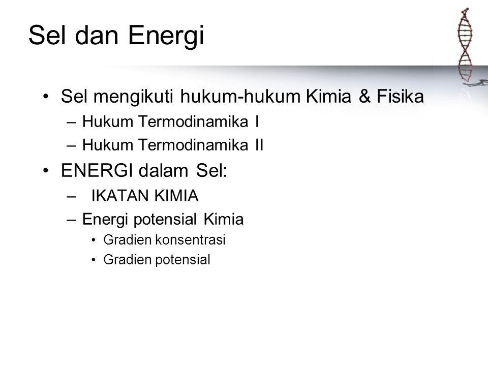 Sel dan Energi Sel mengikuti hukum-hukum Kimia & Fisika –Hukum Termodinamika I –Hukum Termodinamika II ENERGI dalam Sel: – IKATAN KIMIA –Energi potens