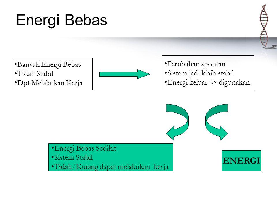 Energi Bebas Banyak Energi Bebas Tidak Stabil Dpt Melakukan Kerja Perubahan spontan Sistem jadi lebih stabil Energi keluar -> digunakan ENERGI Energi