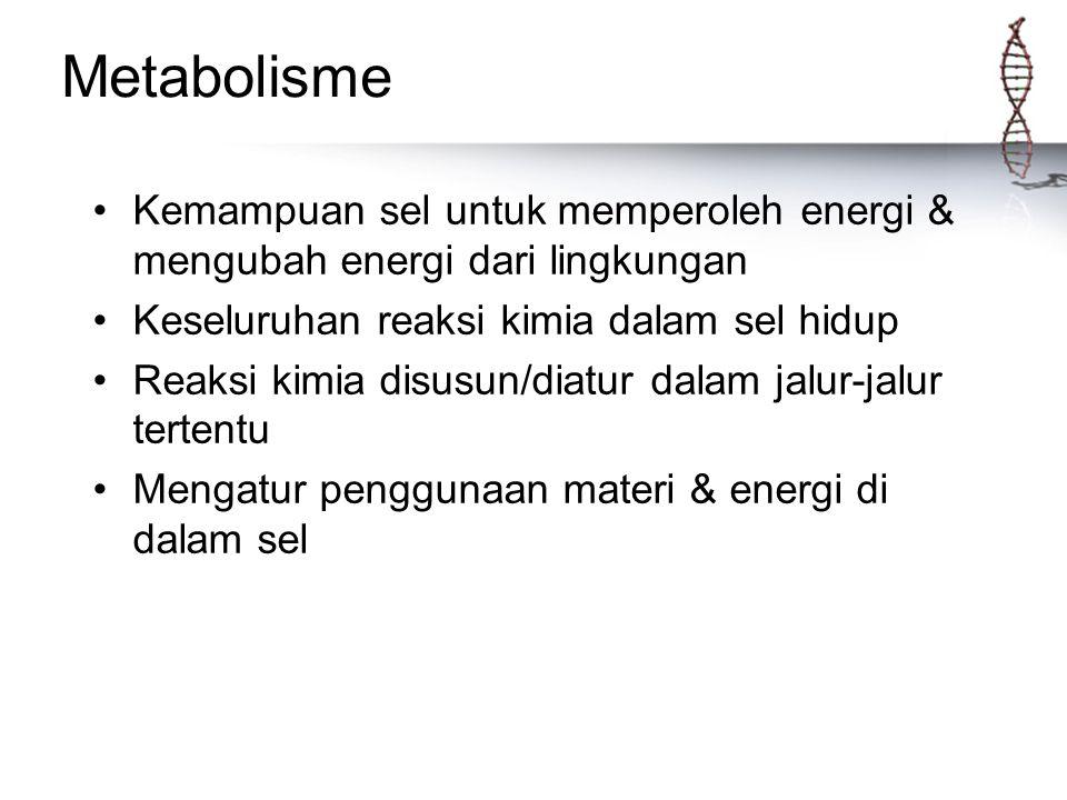 Metabolisme Kemampuan sel untuk memperoleh energi & mengubah energi dari lingkungan Keseluruhan reaksi kimia dalam sel hidup Reaksi kimia disusun/diat