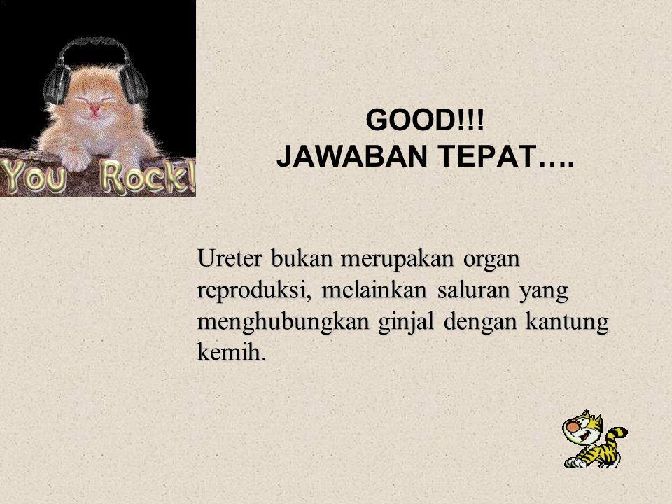 GOOD!!.JAWABAN TEPAT….