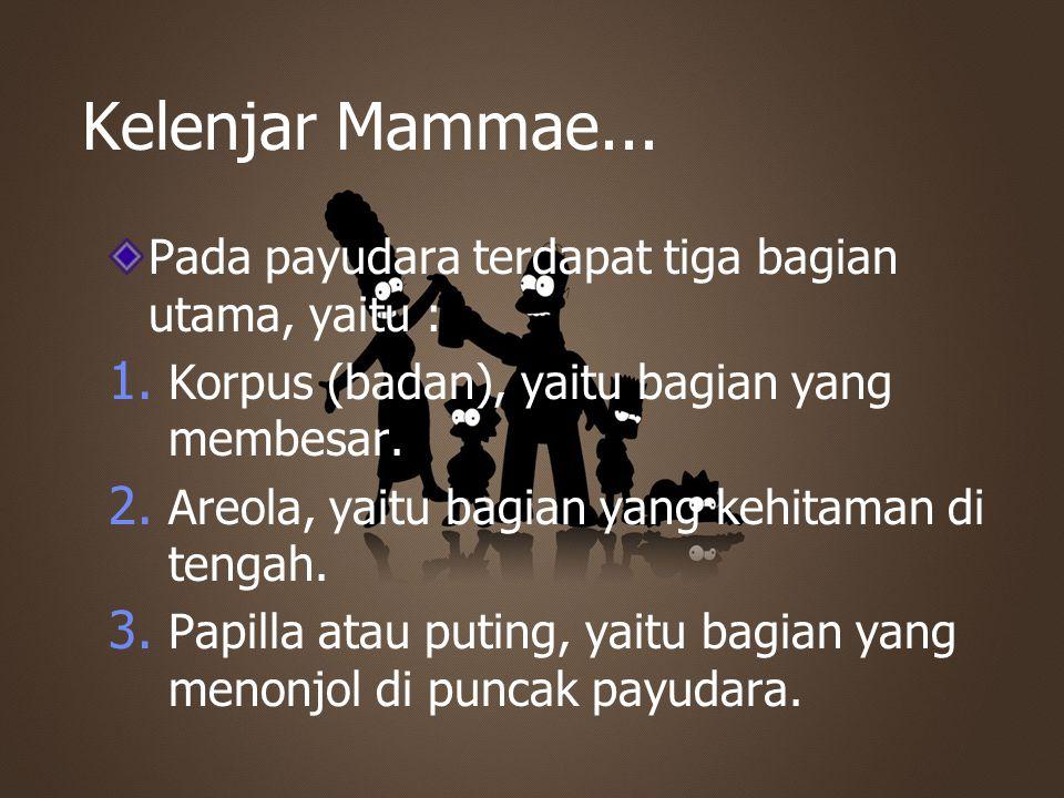 Kelenjar Mammae... Pada payudara terdapat tiga bagian utama, yaitu : 1. Korpus (badan), yaitu bagian yang membesar. 2. Areola, yaitu bagian yang kehit