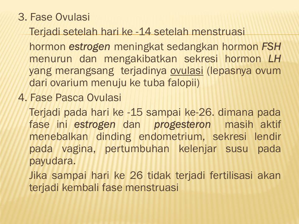 3. Fase Ovulasi Terjadi setelah hari ke -14 setelah menstruasi hormon estrogen meningkat sedangkan hormon FSH menurun dan mengakibatkan sekresi hormon