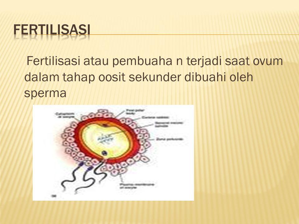 Fertilisasi atau pembuaha n terjadi saat ovum dalam tahap oosit sekunder dibuahi oleh sperma