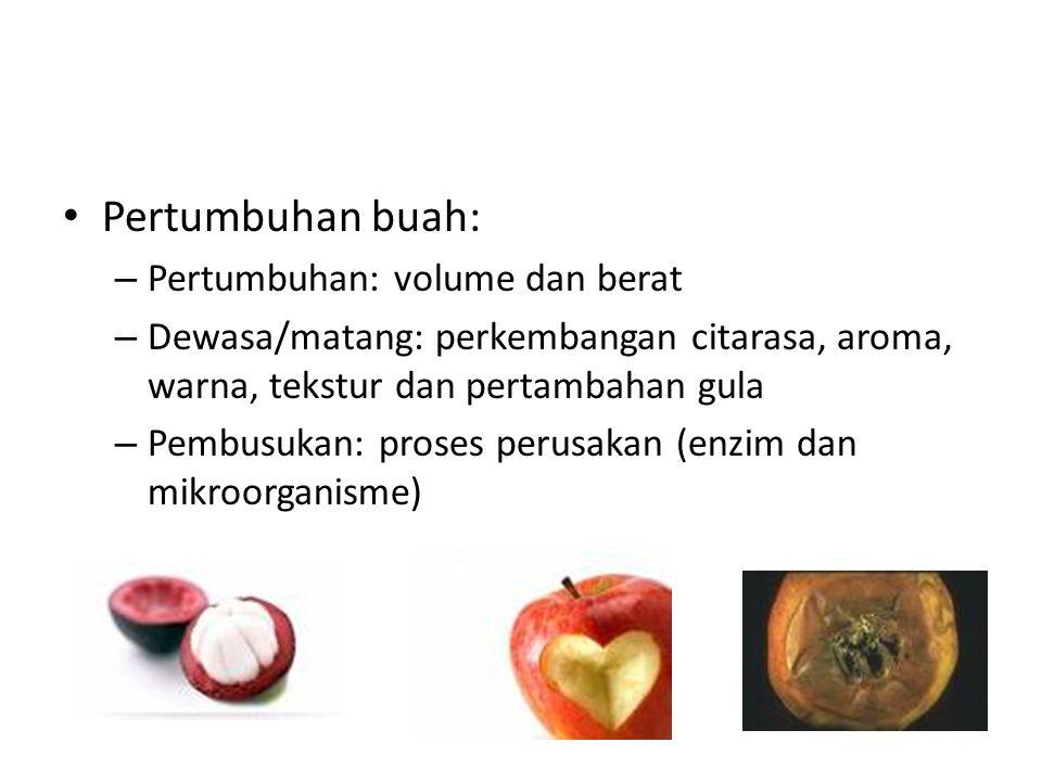 Pertumbuhan buah: – Pertumbuhan: volume dan berat – Dewasa/matang: perkembangan citarasa, aroma, warna, tekstur dan pertambahan gula – Pembusukan: pro