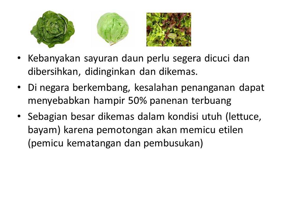 Kebanyakan sayuran daun perlu segera dicuci dan dibersihkan, didinginkan dan dikemas. Di negara berkembang, kesalahan penanganan dapat menyebabkan ham
