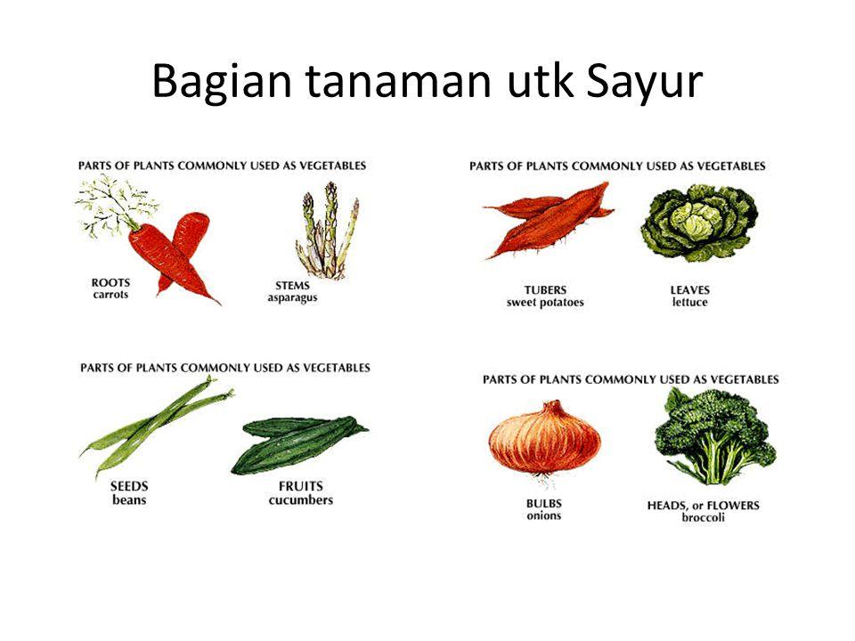 Bagian tanaman utk Sayur