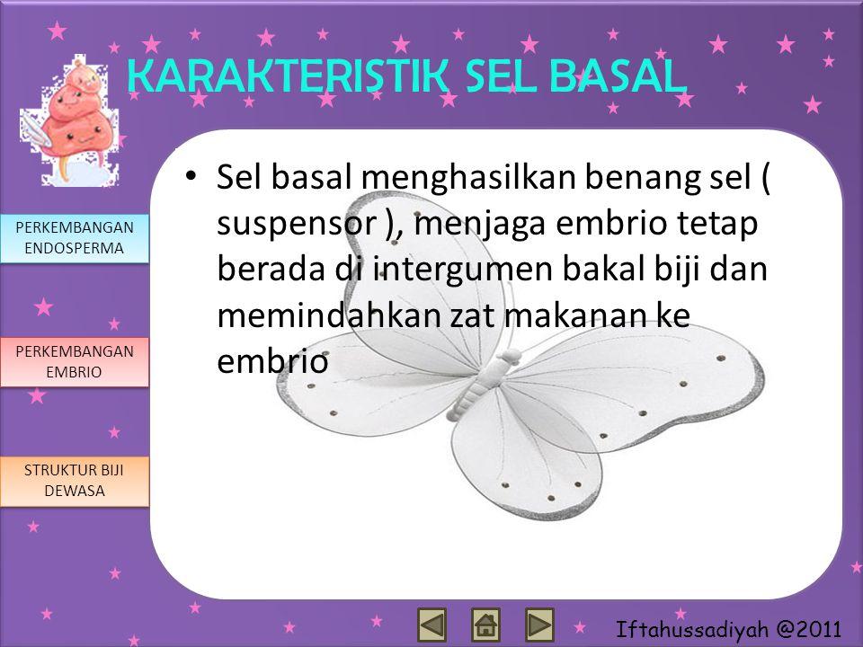 Iftahussadiyah @2011 KARAKTERISTIK SEL BASAL Sel basal menghasilkan benang sel ( suspensor ), menjaga embrio tetap berada di intergumen bakal biji dan