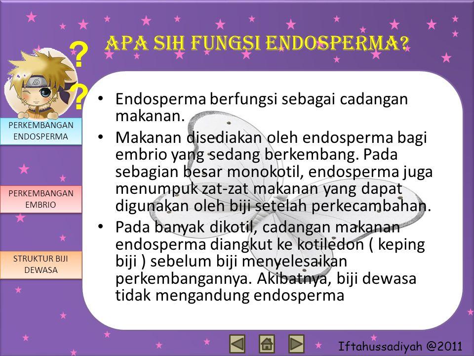 Iftahussadiyah @2011 Apa sih fungsi endosperma? Endosperma berfungsi sebagai cadangan makanan. Makanan disediakan oleh endosperma bagi embrio yang sed