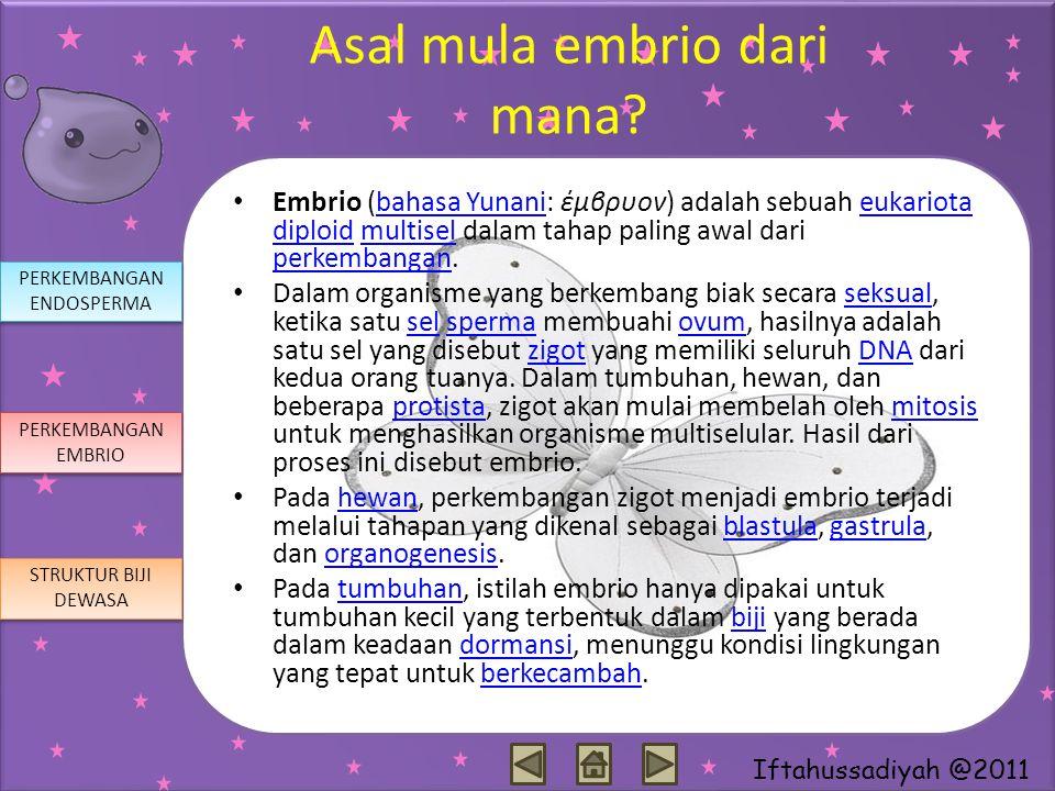 Iftahussadiyah @2011 Asal mula embrio dari mana? Embrio (bahasa Yunani: έμβρυον) adalah sebuah eukariota diploid multisel dalam tahap paling awal dari