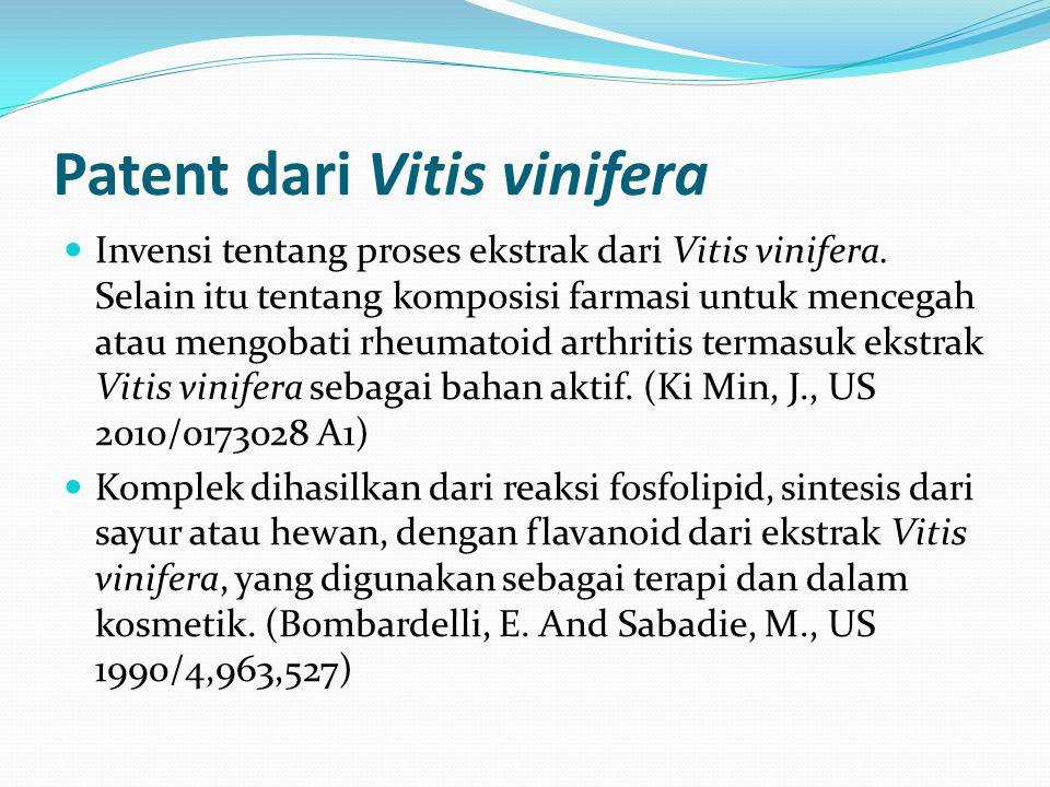 Patent dari Vitis vinifera Invensi tentang proses ekstrak dari Vitis vinifera. Selain itu tentang komposisi farmasi untuk mencegah atau mengobati rheu