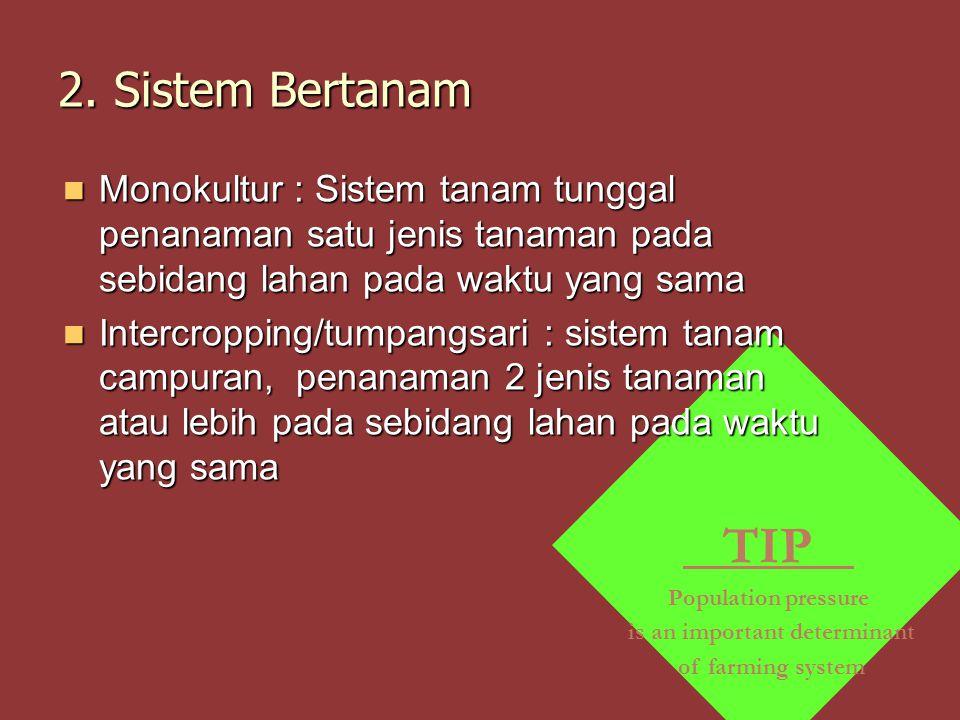 TIP Population pressure is an important determinant of farming system 2. Sistem Bertanam Monokultur : Sistem tanam tunggal penanaman satu jenis tanama