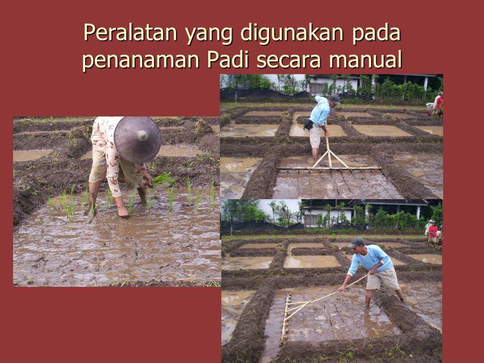 Peralatan yang digunakan pada penanaman Padi secara manual