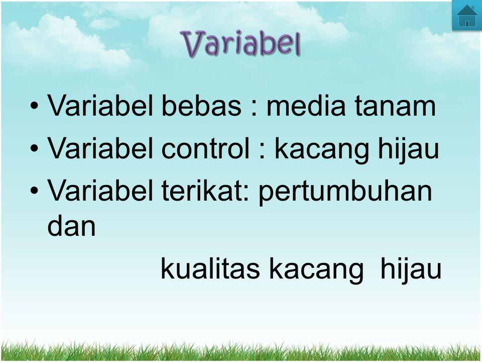 Variabel bebas : media tanam Variabel control : kacang hijau Variabel terikat: pertumbuhan dan kualitas kacang hijau
