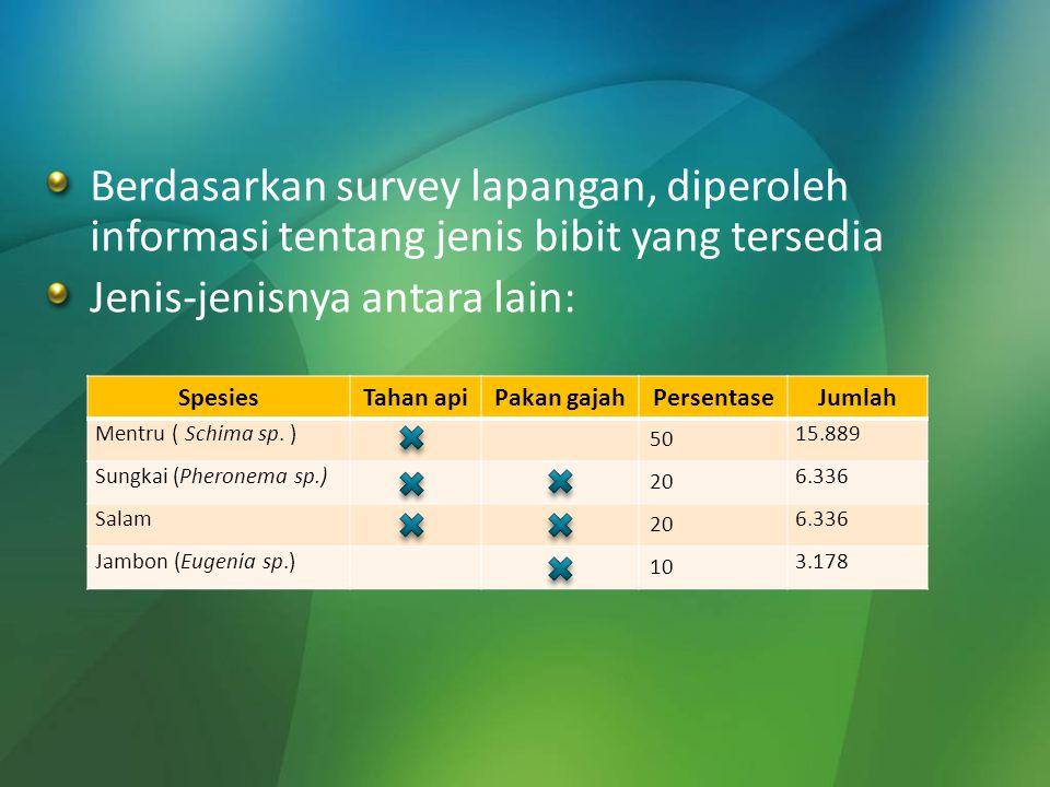 Berdasarkan survey lapangan, diperoleh informasi tentang jenis bibit yang tersedia Jenis-jenisnya antara lain: SpesiesTahan apiPakan gajahPersentaseJu