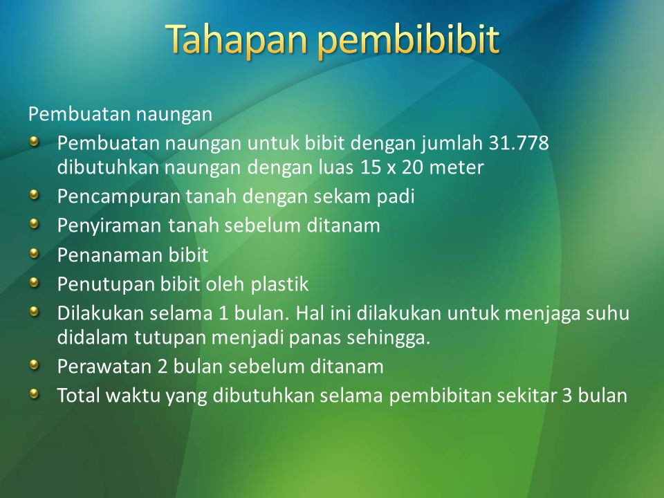 Pembuatan naungan Pembuatan naungan untuk bibit dengan jumlah 31.778 dibutuhkan naungan dengan luas 15 x 20 meter Pencampuran tanah dengan sekam padi