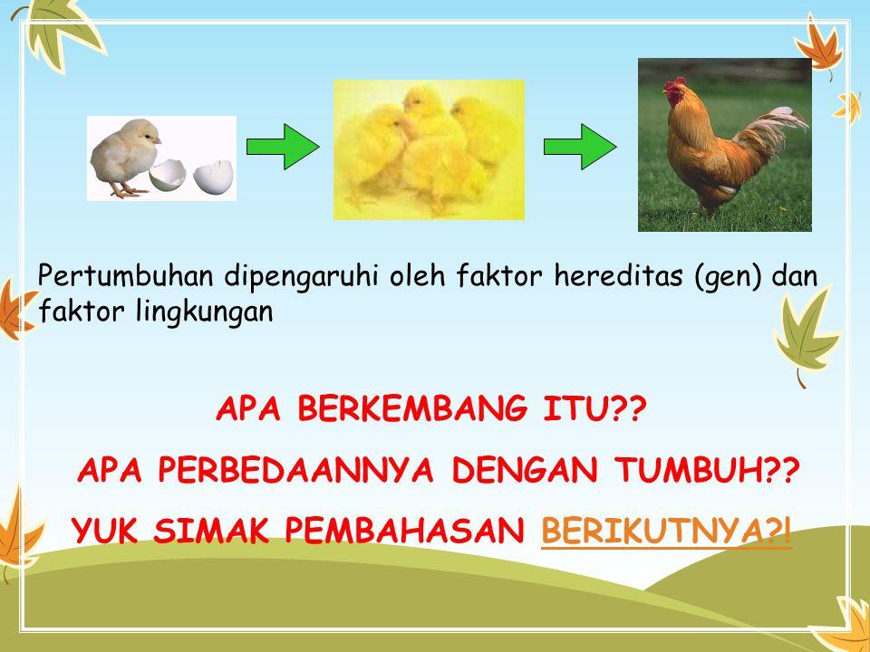 Pertumbuhan dipengaruhi oleh faktor hereditas (gen) dan faktor lingkungan APA BERKEMBANG ITU?? APA PERBEDAANNYA DENGAN TUMBUH?? YUK SIMAK PEMBAHASAN B