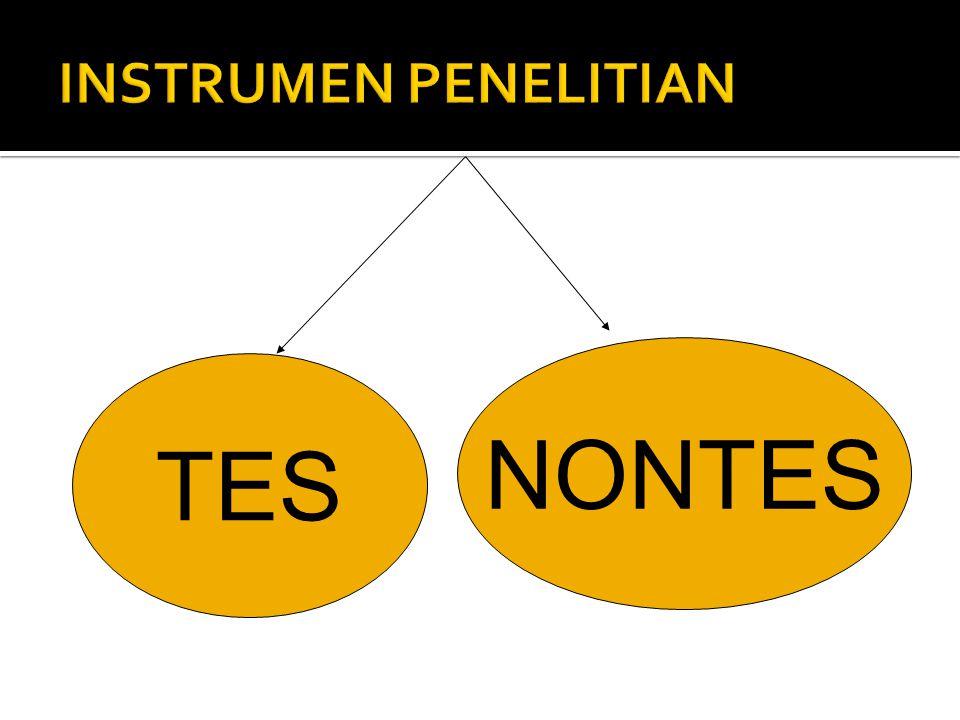 TES NONTES