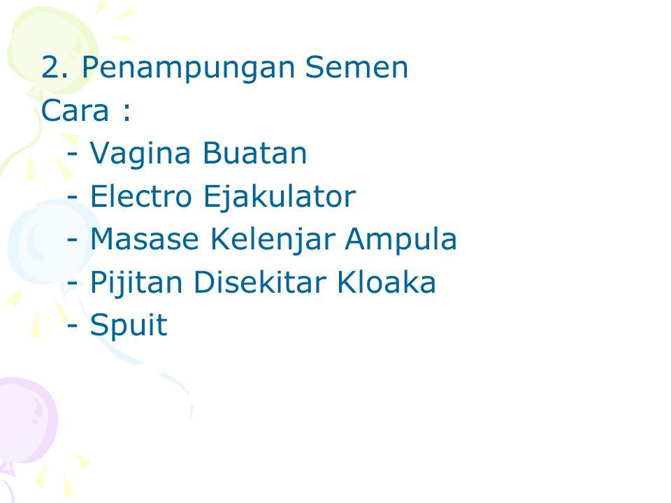 2. Penampungan Semen Cara : - Vagina Buatan - Electro Ejakulator - Masase Kelenjar Ampula - Pijitan Disekitar Kloaka - Spuit