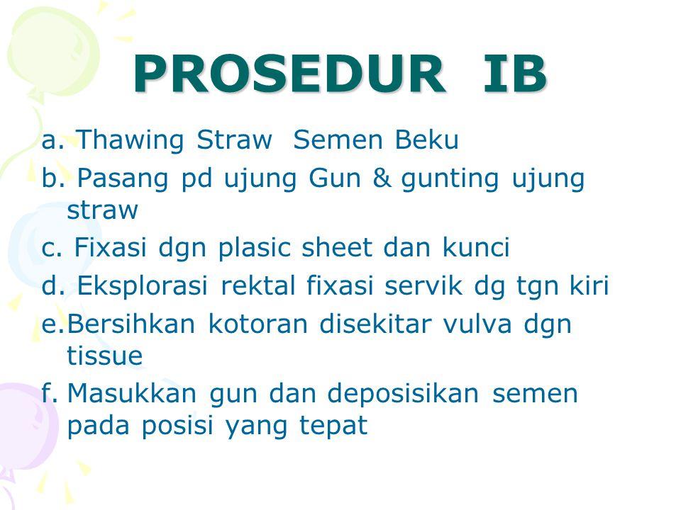 PROSEDUR IB a. Thawing Straw Semen Beku b. Pasang pd ujung Gun & gunting ujung straw c. Fixasi dgn plasic sheet dan kunci d. Eksplorasi rektal fixasi