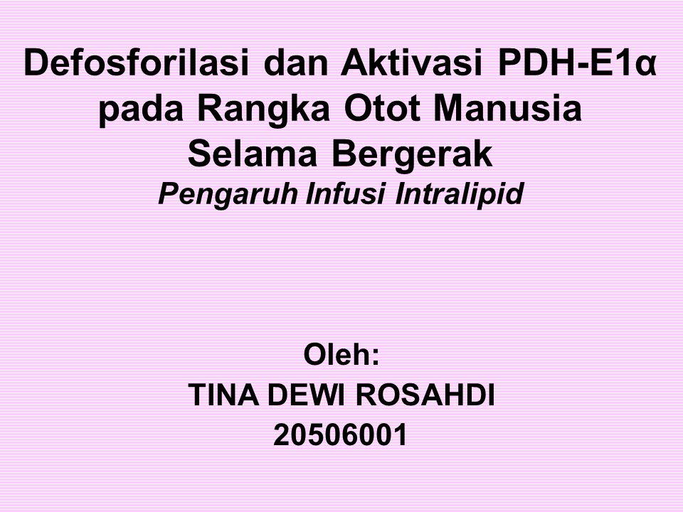 Defosforilasi dan Aktivasi PDH-E1α pada Rangka Otot Manusia Selama Bergerak Pengaruh Infusi Intralipid Oleh: TINA DEWI ROSAHDI 20506001