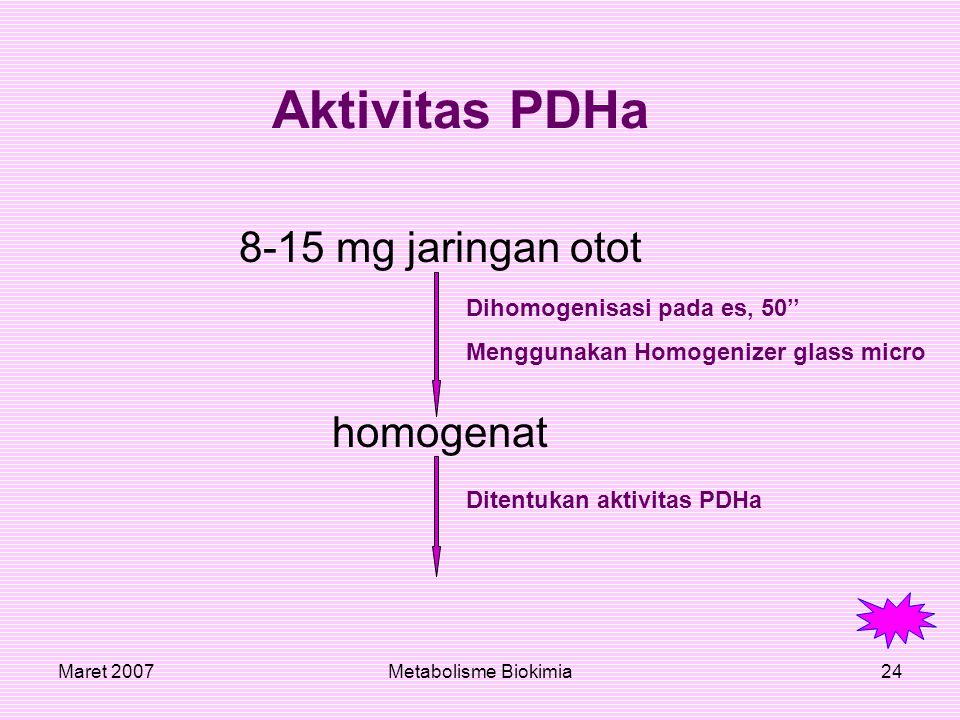 Maret 2007Metabolisme Biokimia24 Aktivitas PDHa 8-15 mg jaringan otot homogenat Dihomogenisasi pada es, 50'' Menggunakan Homogenizer glass micro Diten