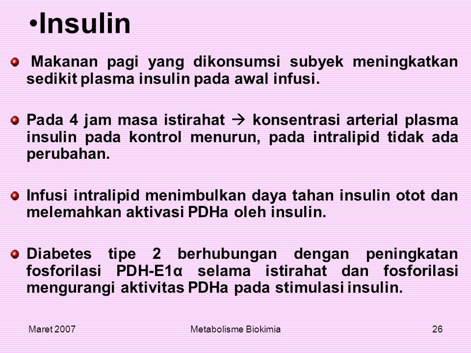 Maret 2007Metabolisme Biokimia26 Insulin Makanan pagi yang dikonsumsi subyek meningkatkan sedikit plasma insulin pada awal infusi. Pada 4 jam masa ist