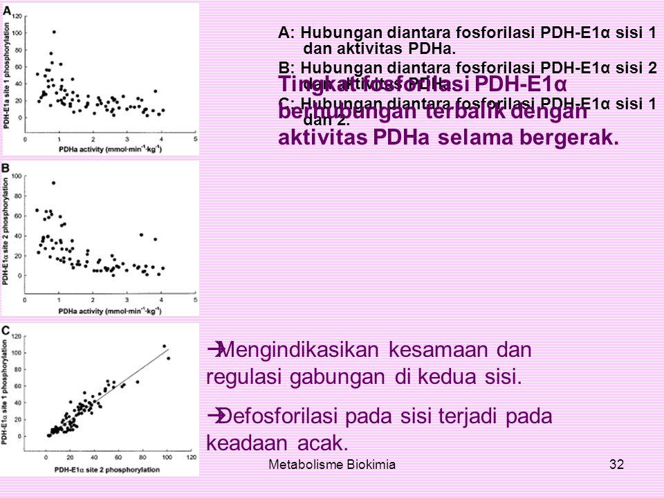 Maret 2007Metabolisme Biokimia32 A: Hubungan diantara fosforilasi PDH-E1α sisi 1 dan aktivitas PDHa. B: Hubungan diantara fosforilasi PDH-E1α sisi 2 d
