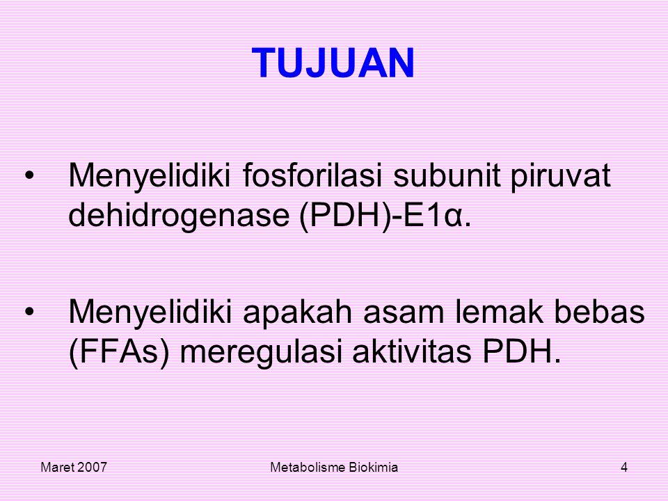 Maret 2007Metabolisme Biokimia4 TUJUAN Menyelidiki fosforilasi subunit piruvat dehidrogenase (PDH)-E1α. Menyelidiki apakah asam lemak bebas (FFAs) mer