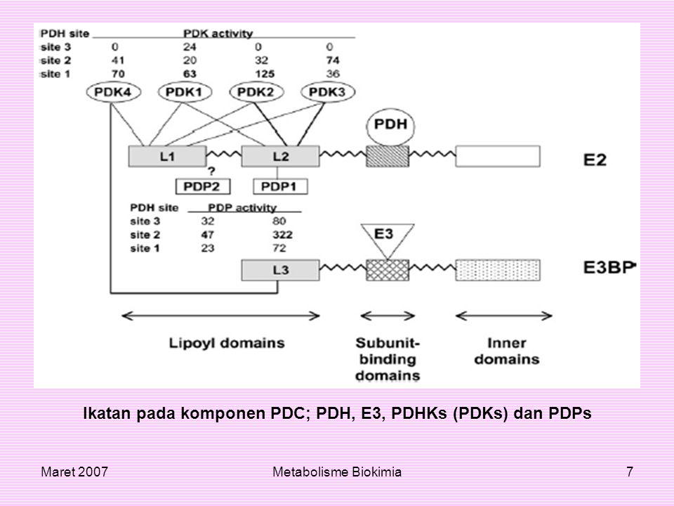Maret 2007Metabolisme Biokimia8 PDH-E1α PDH E1 adalah heterotetramer subunit 2α dan 2β.