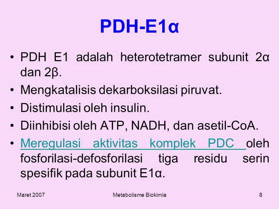 Maret 2007Metabolisme Biokimia8 PDH-E1α PDH E1 adalah heterotetramer subunit 2α dan 2β. Mengkatalisis dekarboksilasi piruvat. Distimulasi oleh insulin