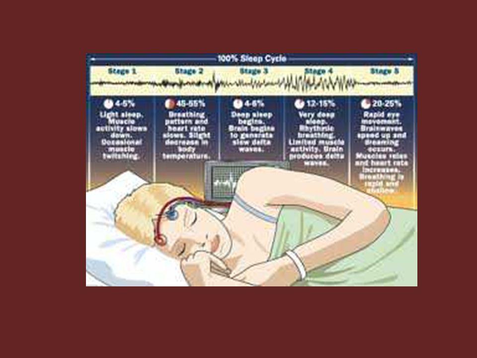 NREM (1) Tidur dalam/istirahat penuh & gelombang otak lebih lambat Tidur nyenyak, menyegarkan tanpa mimpi atau tidur dg gelombang delta – Ciri: istirahat penuh, tekanan darah menurun, frekuensi napan turun, metabolisme turun