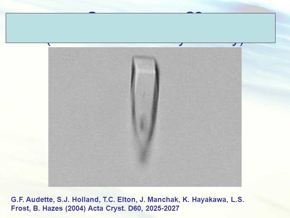 Space group C2 (two-fold rotation symmetry) G.F. Audette, S.J. Holland, T.C. Elton, J. Manchak, K. Hayakawa, L.S. Frost, B. Hazes (2004) Acta Cryst. D