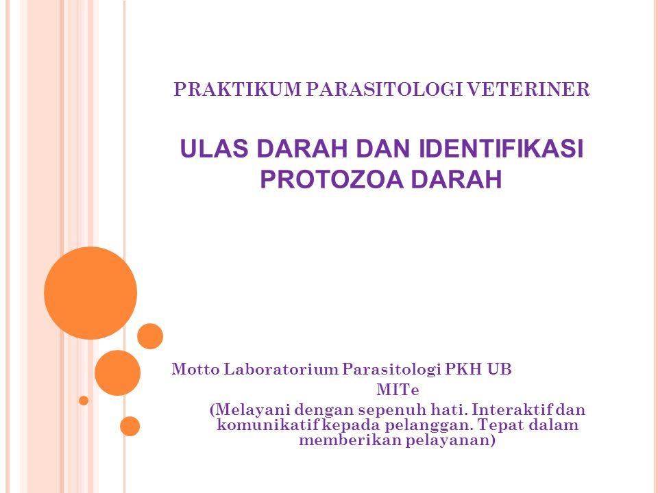 PRAKTIKUM PARASITOLOGI VETERINER ULAS DARAH DAN IDENTIFIKASI PROTOZOA DARAH Motto Laboratorium Parasitologi PKH UB MITe (Melayani dengan sepenuh hati.
