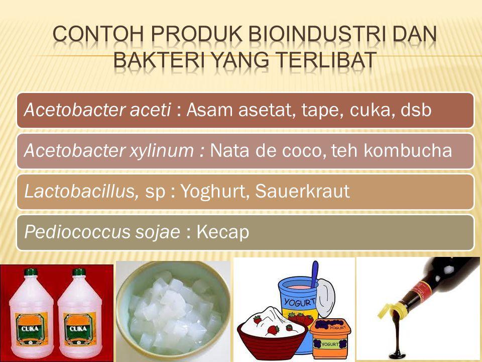 Acetobacter aceti : Asam asetat, tape, cuka, dsbAcetobacter xylinum : Nata de coco, teh kombuchaLactobacillus, sp : Yoghurt, SauerkrautPediococcus soj