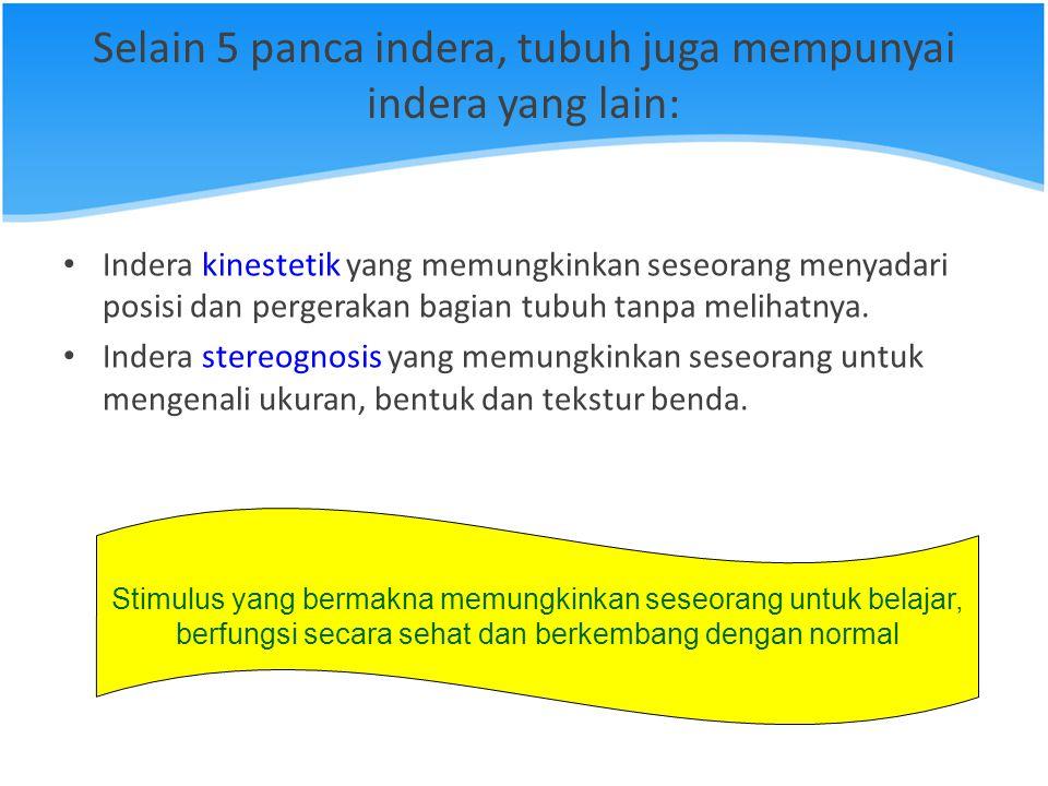 Selain 5 panca indera, tubuh juga mempunyai indera yang lain: Indera kinestetik yang memungkinkan seseorang menyadari posisi dan pergerakan bagian tub