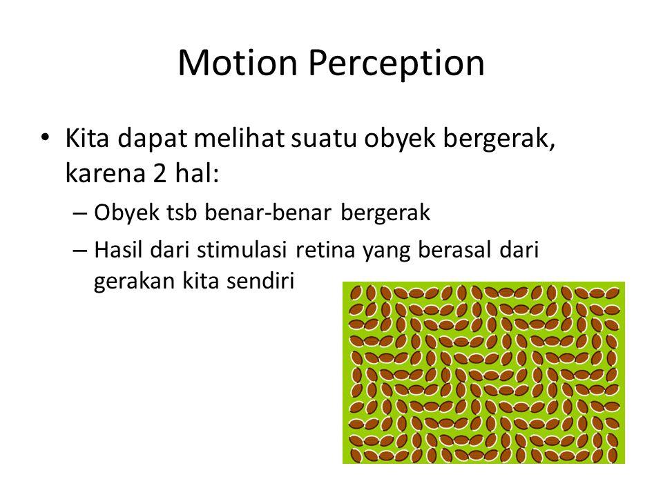 Motion Perception Kita dapat melihat suatu obyek bergerak, karena 2 hal: – Obyek tsb benar-benar bergerak – Hasil dari stimulasi retina yang berasal dari gerakan kita sendiri
