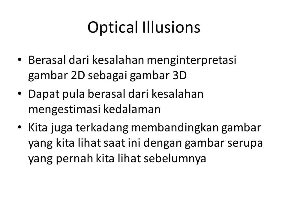 Optical Illusions Berasal dari kesalahan menginterpretasi gambar 2D sebagai gambar 3D Dapat pula berasal dari kesalahan mengestimasi kedalaman Kita juga terkadang membandingkan gambar yang kita lihat saat ini dengan gambar serupa yang pernah kita lihat sebelumnya