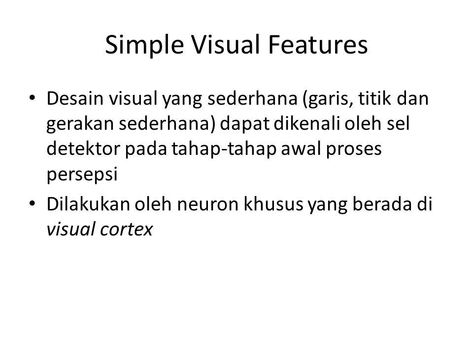 Simple Visual Features Desain visual yang sederhana (garis, titik dan gerakan sederhana) dapat dikenali oleh sel detektor pada tahap-tahap awal proses persepsi Dilakukan oleh neuron khusus yang berada di visual cortex
