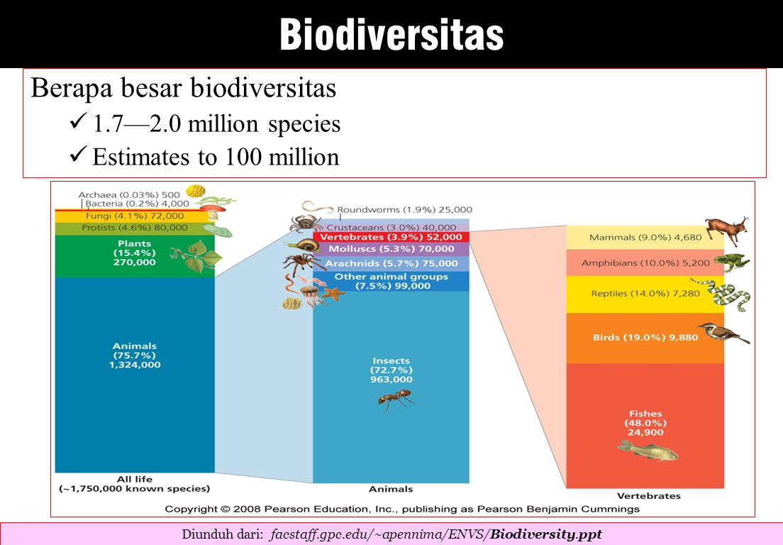 Berapa besar biodiversitas 1.7—2.0 million species Estimates to 100 million Diunduh dari: facstaff.gpc.edu/~apennima/ENVS/Biodiversity.ppt ‎ Biodiversitas