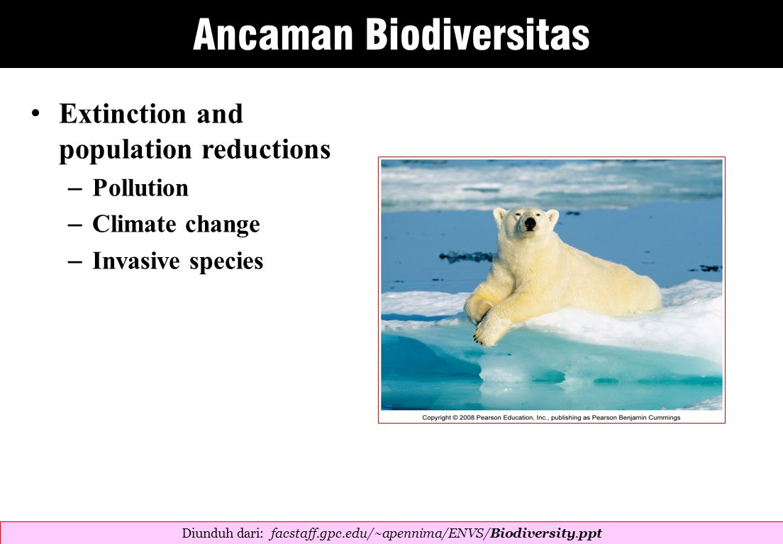 Extinction and population reductions – Pollution – Climate change – Invasive species Diunduh dari: facstaff.gpc.edu/~apennima/ENVS/Biodiversity.ppt ‎ Ancaman Biodiversitas
