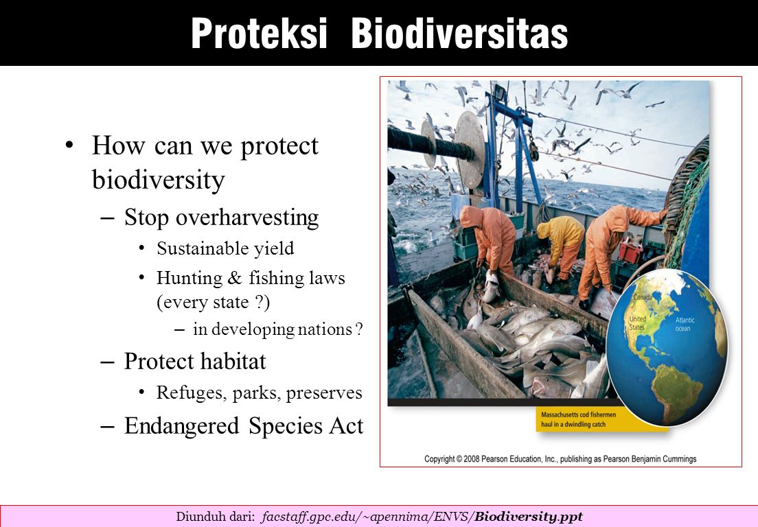 How can we protect biodiversity – Stop overharvesting Sustainable yield Hunting & fishing laws (every state ) – in developing nations .